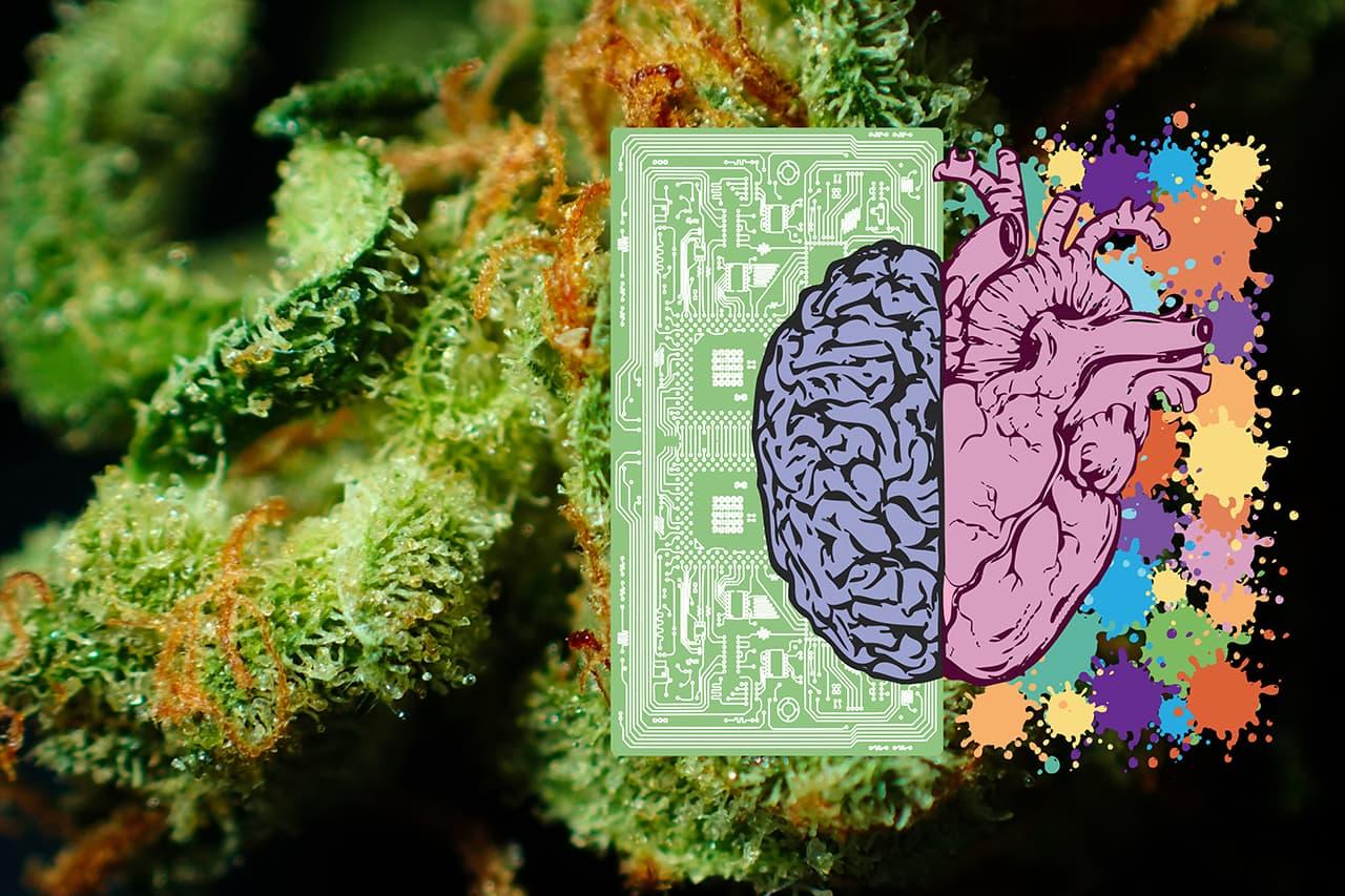 Inteligencia ¿Natural, Artificial o emocional?